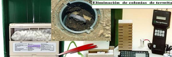 Preguntas frecuentes sobre eliminación de termitas: SENTRI*TECH