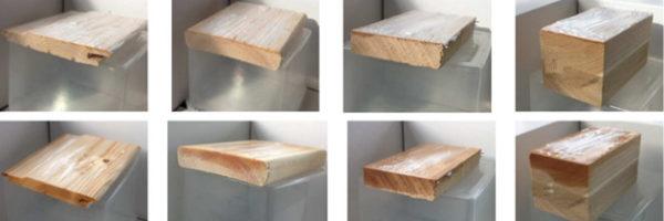 Insectos de la madera, cuidado con Xilix Gel